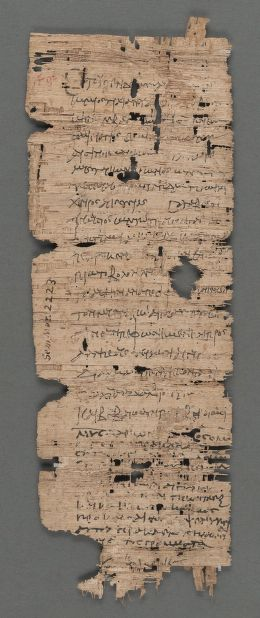 Papyrus_bill_of_sale_donkey, Harvard University